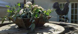 Fleurs sur le puits